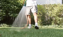 Tips on how to water your lawn